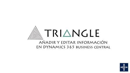 Añadir y editar información en Business Central