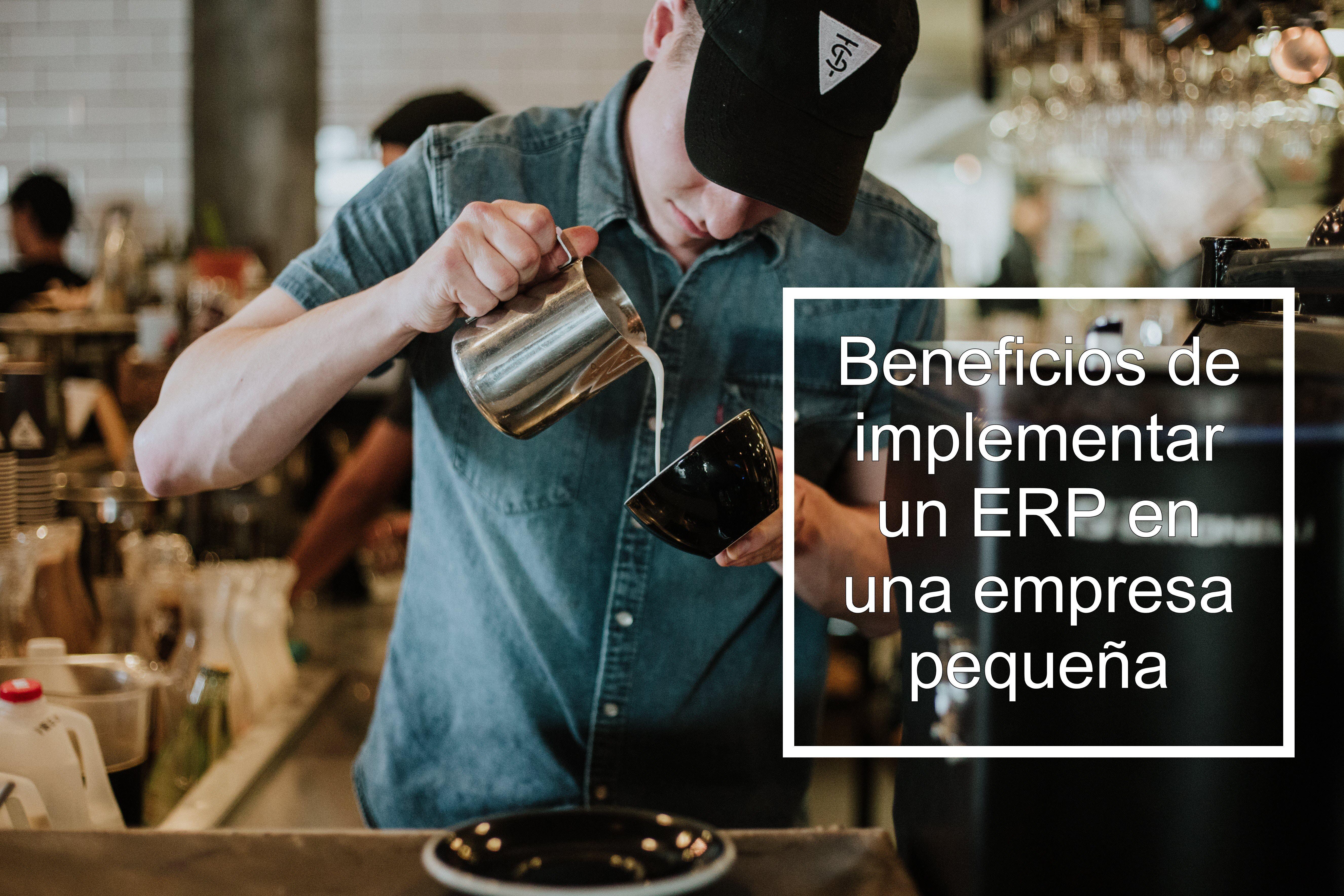 ERP para pequeñas empresas