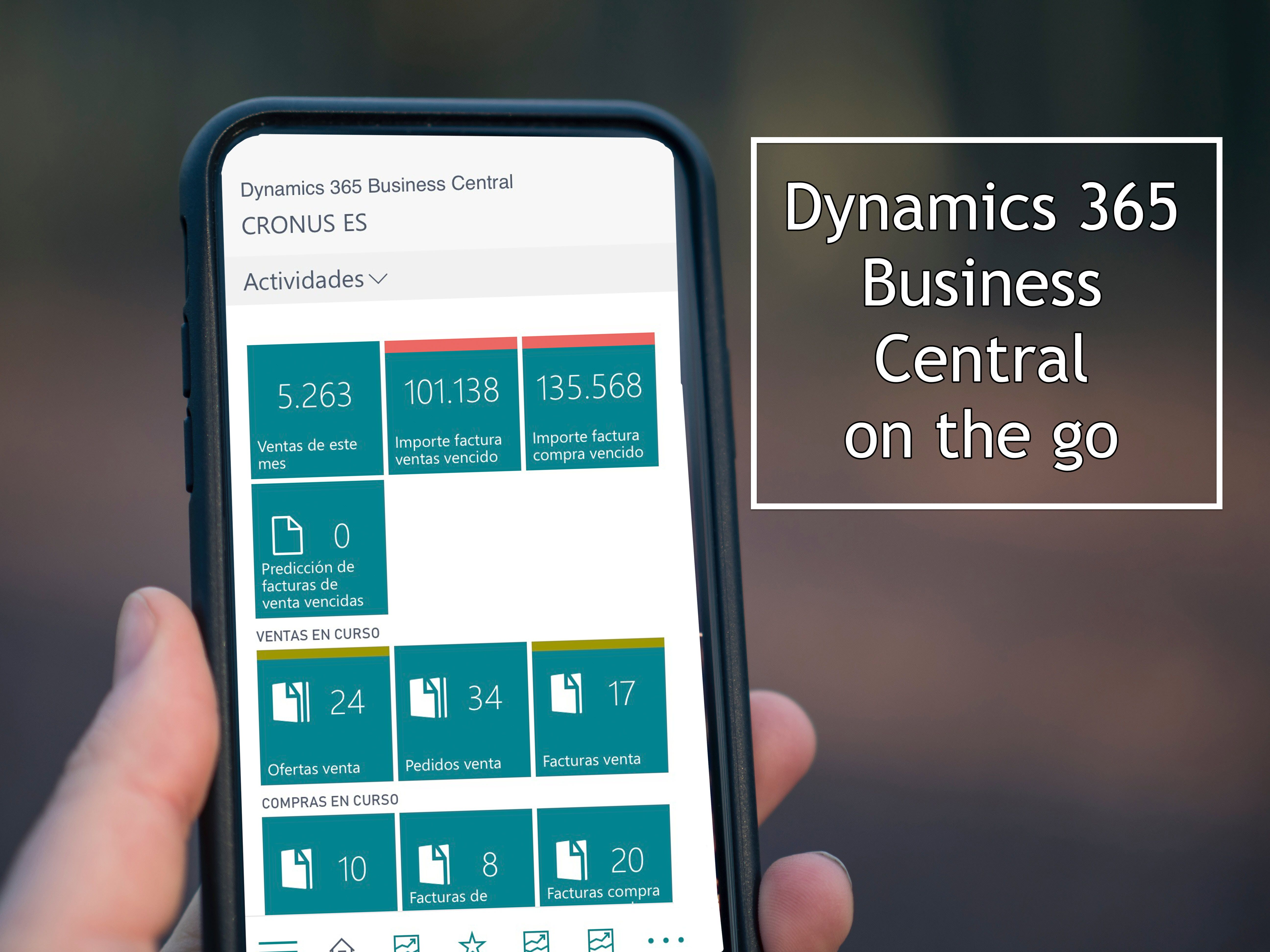 Dynamics 365 Business Central mobile